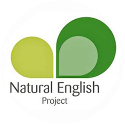 Natural English Project